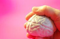 Hersenen in hand